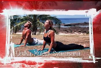 yoga_pilates_surfing_fitness_upward_dog